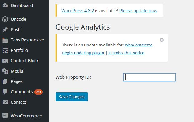 Google Analytics voor WordPress